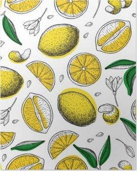 Poster Limon vektör seamless pattern. Çizim limon renkli arka plan