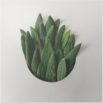 Poster Yeşil yaprakların yaratıcı minimal düzenlenmesi. doğa kavramı Düz yatıyordu.