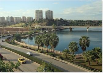 A view of Adana, Turkey Poster