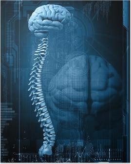 Poster Abstract ontwerp met de hersenen en de wervelkolom