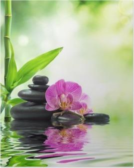 Poster Achtergrond Spa - orchideeën zwarte stenen en bamboe op het water