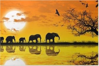 Poster Afrique