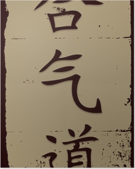 Aikido in Chinese writing Poster