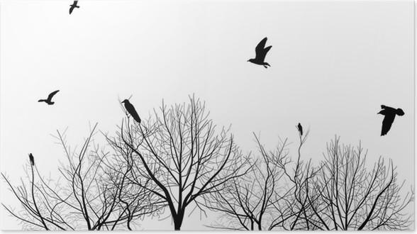 Póster Aislados árboles desnudos y siluetas de las aves • Pixers ...