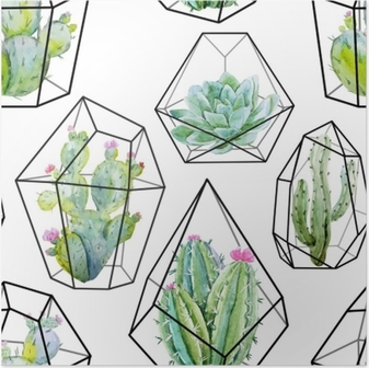 Poster Aquarel vector cactus patroon