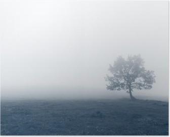 Poster Arbre solitaire avec le brouillard