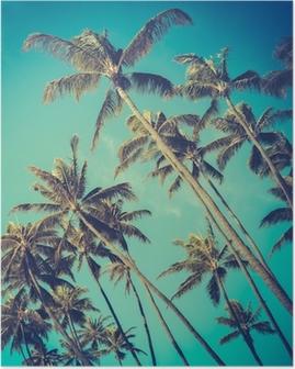 Poster Arbres rétro Diagonal Palm In Hawaii