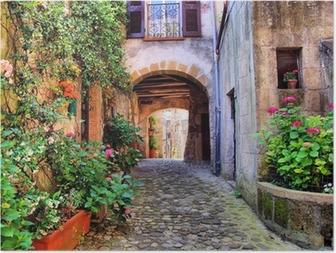 Poster Arqué rue pavée dans un village de Toscane, Italie