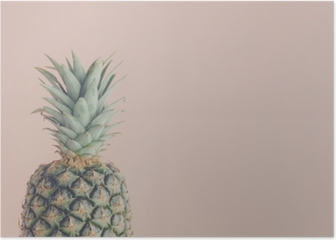 Art view of fresh pineapple Poster