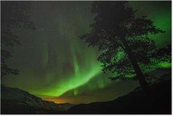 Póster Aurora Borealis (aurora boreal) en Suecia