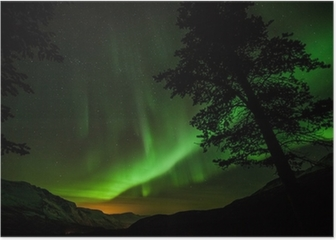 Aurora Borealis (Northern lights) in Sweden Poster