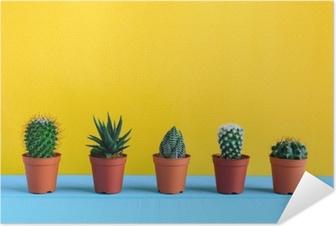 Póster Autoadhesivo Cactus en el escritorio con wal amarillo