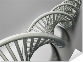 Poster autocollant ADN Strang