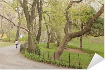 Poster autocollant Central Park