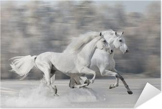 Poster autocollant Deux chevaux blancs en hiver courir galop