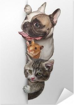Poster autocollant Groupe Animal Connexion Vertical
