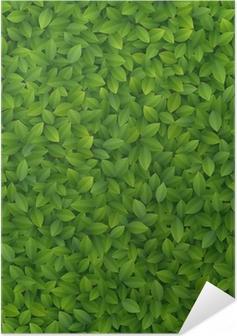 Poster autocollant Les feuilles vertes texture.