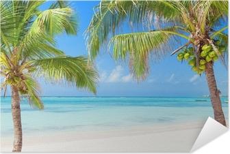 Poster autocollant Plage tropicale avec cocotiers et ses eaux transparentes
