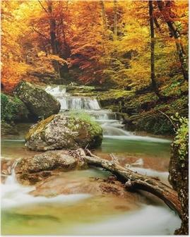 Poster Automne ruisseau bois avec des arbres jaunes