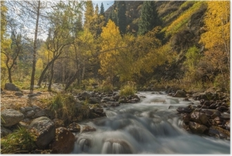 autumn landscape mountain river Poster