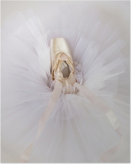 ballet shoes 1 Poster