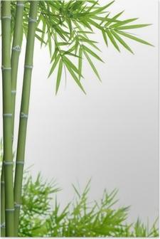 Poster Bamboe met bladeren
