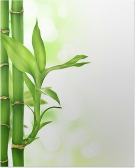 Poster Bamboo frontiere