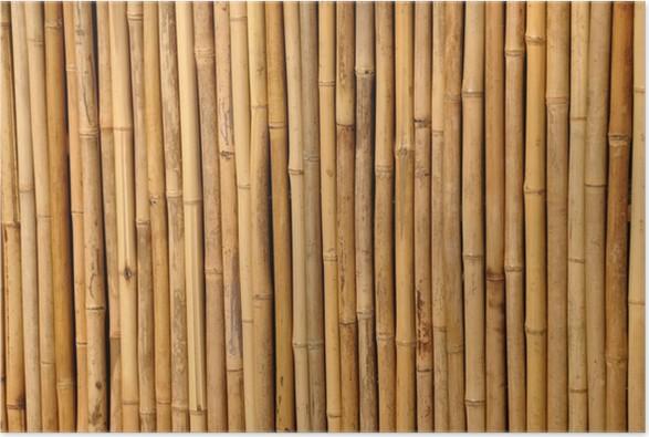 Poster bambus trennwand pixers we leven om te veranderen - Trennwand bambus ...