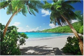 beach, Mahe island, Seychelles Poster