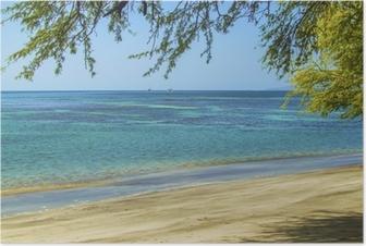 Beach. Ocean. Maui. Poster