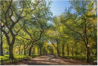 Poster Beau parc dans la belle ville. le centre commercial dans le parc central à l'automne., new york city, usa