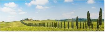 Poster Beau paysage de vignes, Chianti, en Toscane, Italie