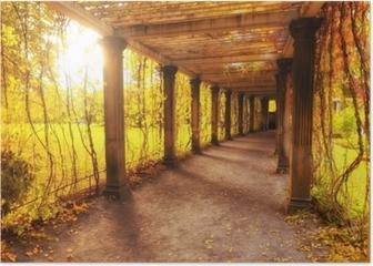 Beautiful autumn park Poster