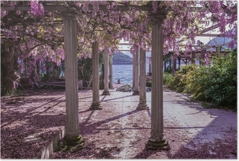Beautiful front yard with pillars and wisteria flowers Poster