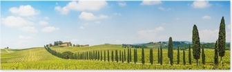 Beautiful landscape with vineyard, Chianti, Tuscany, Italy Poster