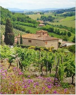 Poster Bekijk door de wijngaarden met stenen huis, Toscane, Italië
