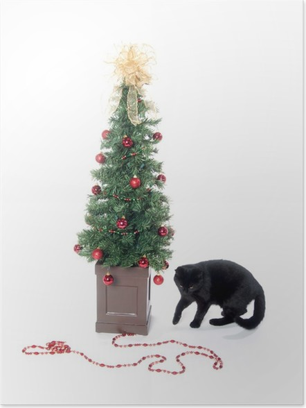 black cat and christmas tree poster