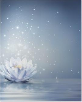 Poster Bleu nénuphar lumière sur l'eau - fond de conte de fées