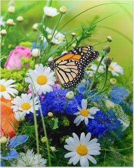 Poster Blumenwiese