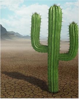 Poster Cactus dans le désert.