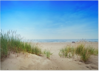 Calm beach with dunes and green grass. Tranquil ocean Poster