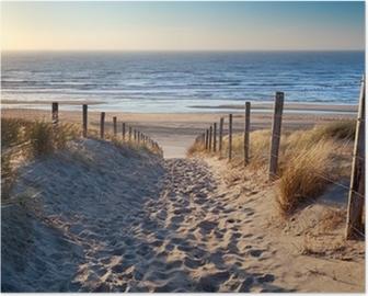Poster Chemin de plage de la mer du Nord dans le soleil d'or