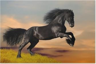 Poster Cheval noir galopant au coucher du soleil
