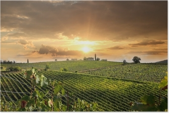 Chianti vineyard landscape in Tuscany, Italy Poster