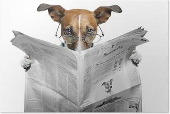 Poster Chien lisant un journal