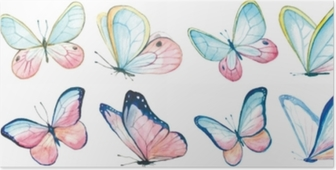 Collection watercolor of flying butterflies. Poster