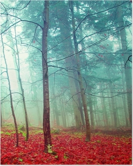 Colorful mystic autumn trees Poster