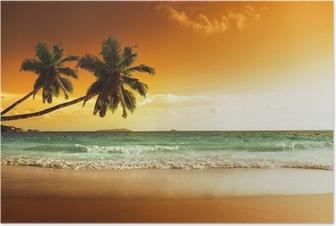 Poster Coucher de soleil sur la plage de la mer des Caraïbes