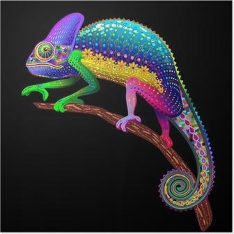 Poster Couleurs Chameleon Fantaisie arc-
