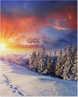 Poster D hiver